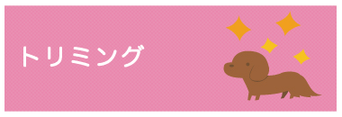 ダイキ丸亀店
