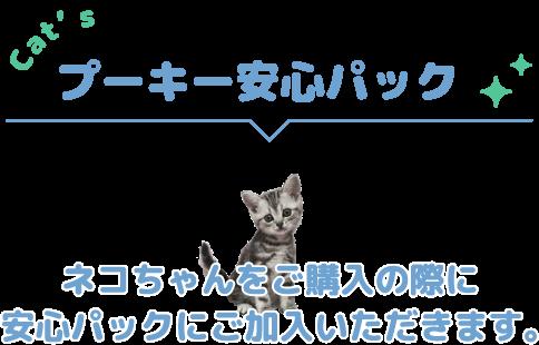 プーキーの安心パック ネコちゃんをご購入の際に安心パックにご加入いただきます。